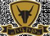 ИГИТ logo, icon