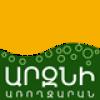 АРЗНИ САНАТОРИЙ logo, icon