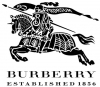 Burberry store logo, icon